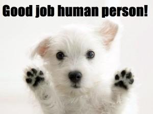puppy 005